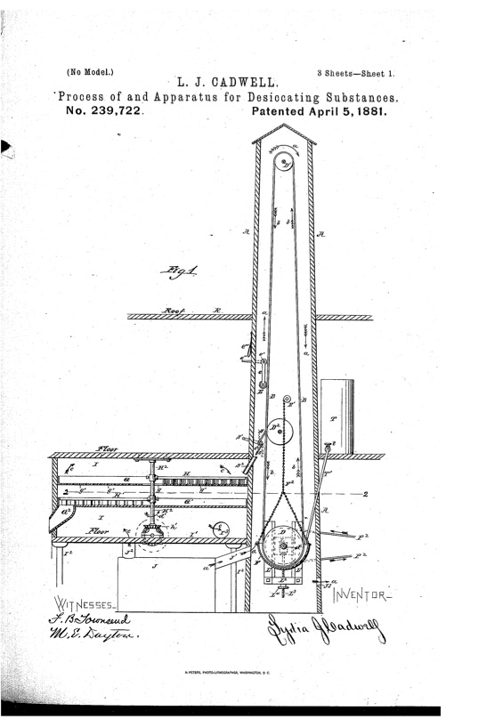 Page 1 of US Patent 239722